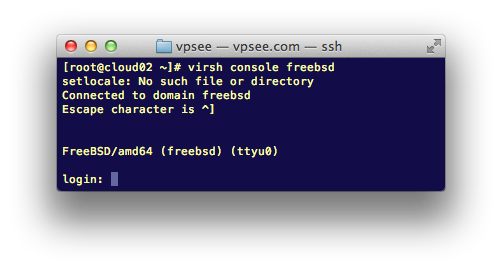 freebsd console on kvm